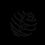 logo studio olisticsmile